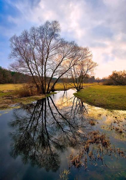 Photograph - Ossow - Dluga River by Tomasz Dziubinski