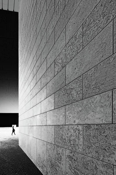 Wall Art - Photograph - Otherside by Paulo Abrantes