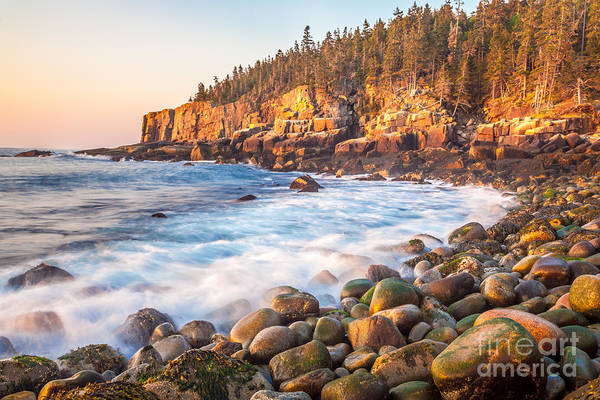 Photograph - Otter Cliff Sunrise In Acadia by Susan Cole Kelly