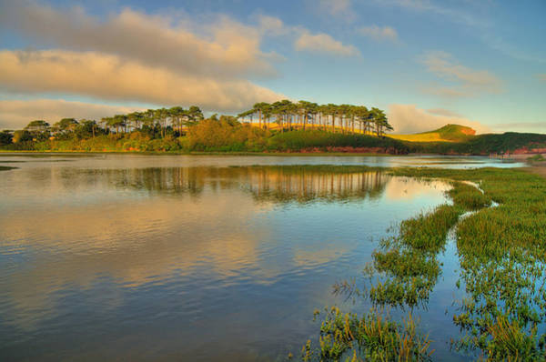 Photograph - Otter Estuary At Budleigh by Pete Hemington