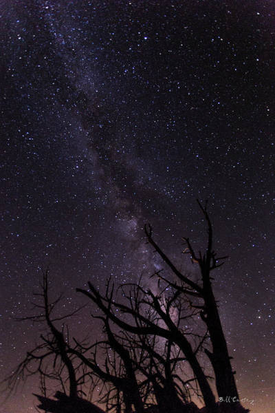 Perseid Wall Art - Photograph - Our Galaxy by Bill Cantey