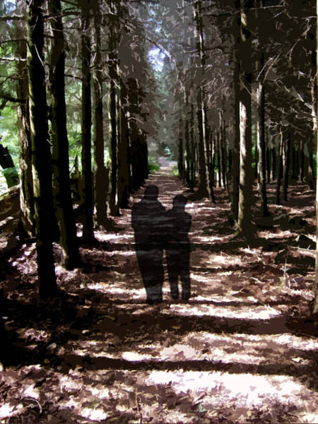 Photograph - Our Shadow Forest by Natasha Marco