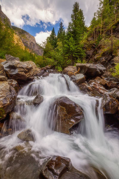 Photograph - Ouray Wilderness by Darren  White