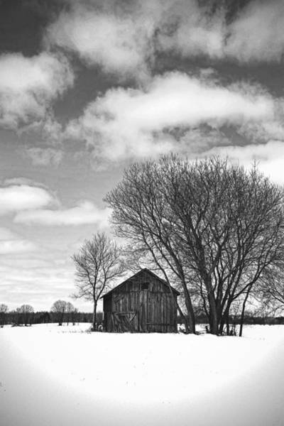 Photograph - Out In The Sticks by Thomas Young
