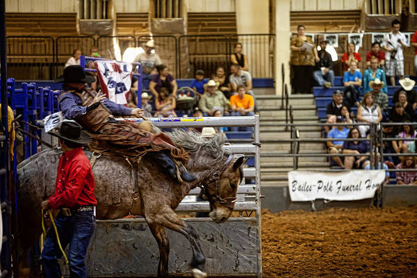 Prca Wall Art - Photograph - Out Of The Gate by Toni Hopper