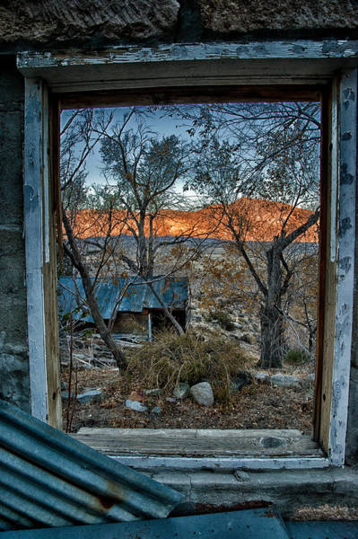 Photograph - Out The Window by Cat Connor