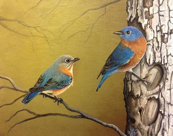Eastern Bluebird Painting - Out To Lunch by Laura Parrish