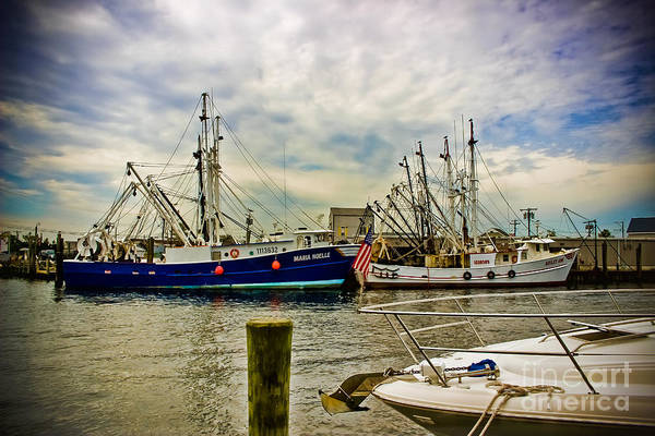 Wall Art - Photograph - Out To Sea by Colleen Kammerer
