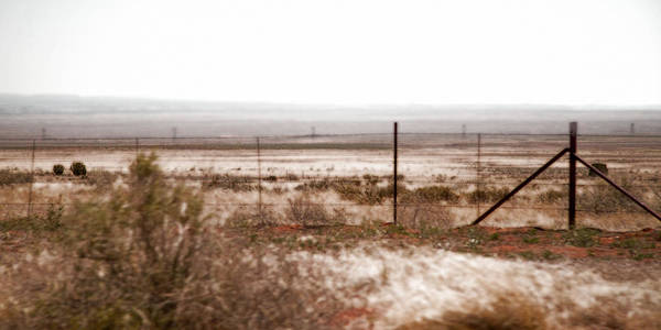 Photograph - Out West Along The Road by Natalie Rotman Cote