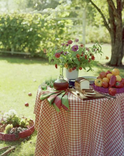Outdoor Furniture Photograph - Outdoor Lunch In The Shade Of A Tree by Wiliam Grigsby