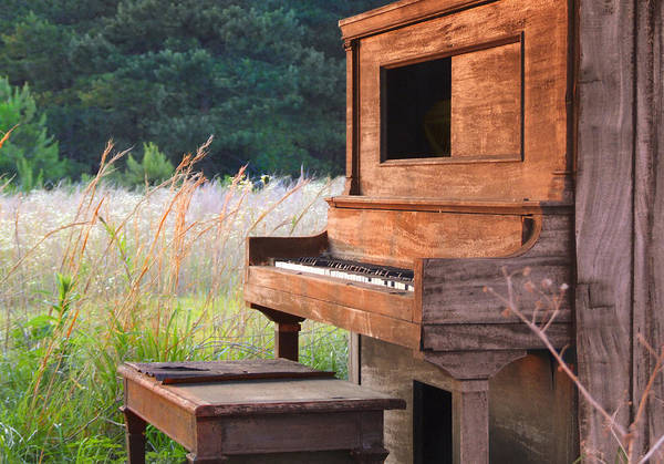 Player Piano Photograph - Outdoor Upright Piano by Mike McGlothlen