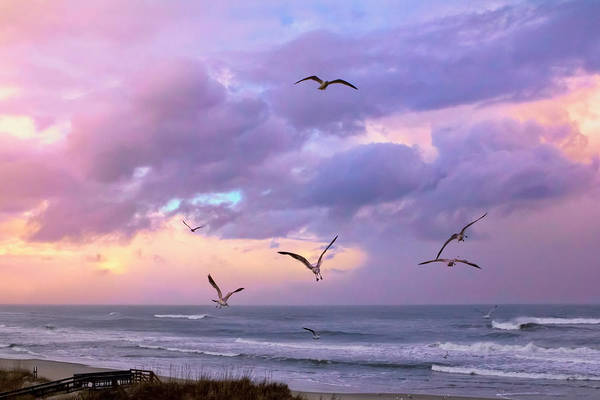 Photograph - Outer Banks Sunrise by Mary Almond