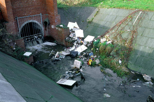 Litter Photograph - Outflow Pipe And Rubbish by Robert Brook/science Photo Library