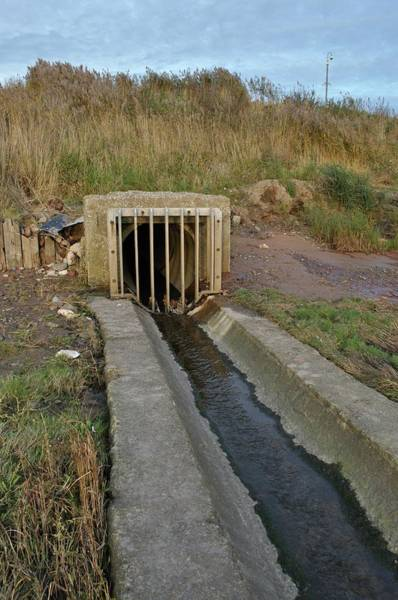 Contamination Photograph - Outflow Pipe Discharging To The Mersey by Robert Brook/science Photo Library