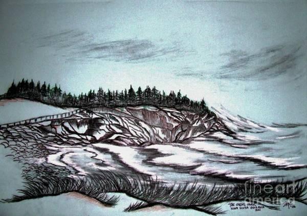 Beach Grass Drawing - Oven's Park Nova Scotia by Janice Pariza
