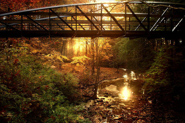 Brooks Photograph - Over The Brook by Rob Blair