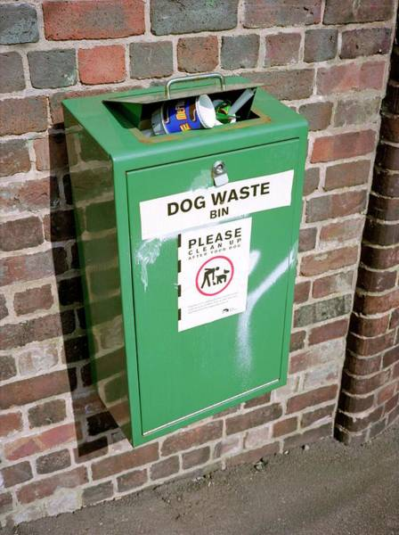 Rubbish Bin Photograph - Overflowing Dog Waste Bin by Robert Brook/science Photo Library