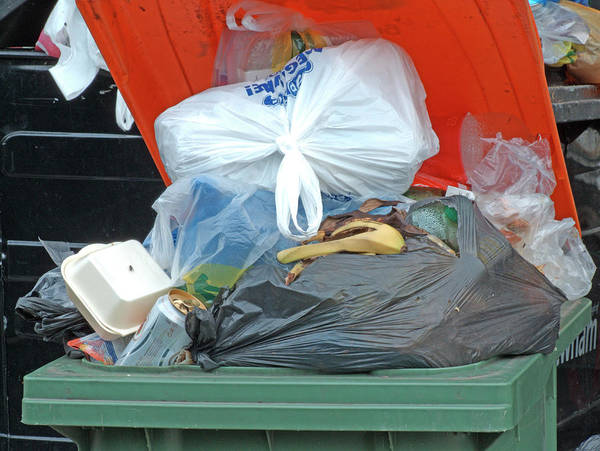 British Food Photograph - Overflowing Rubbish Bin by Alex Bartel