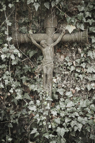 Photograph - Overgrown Crucifix by Maria Heyens