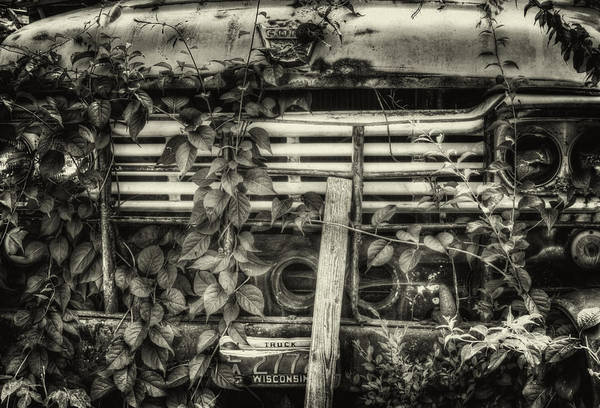 Photograph - Overgrown Ford Truck by Thomas Young