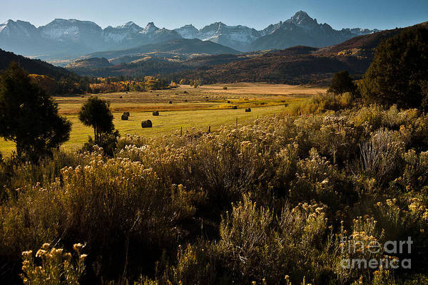 Fourteener Photograph - Overlook To Mt. Sneffles by Steven Reed