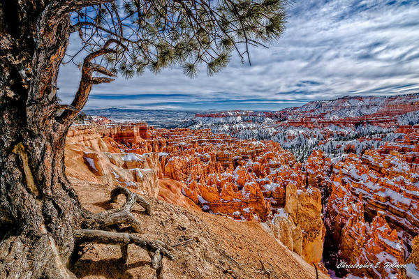 Photograph - Overlooking The Hoodoos by Christopher Holmes