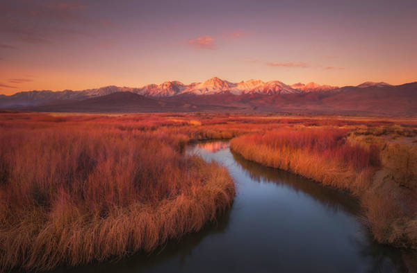 Wall Art - Photograph - Owens River Rd Morning by Celso Mollo Photography