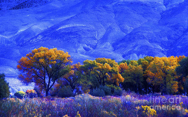 Photograph - Owens Valley Fall Colors  by Paul W Faust -  Impressions of Light