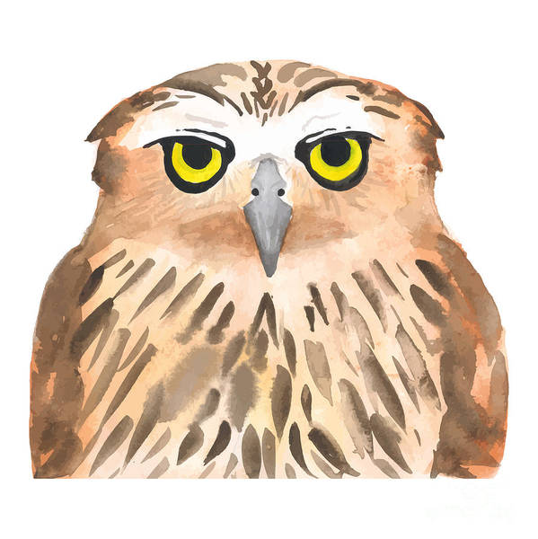 Concentration Wall Art - Digital Art - Owl Bird. Watercolor, Vector by Evgeniy Agarkov