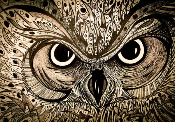 Nocturnal Drawing - Owl Eyes by Nathan Newman