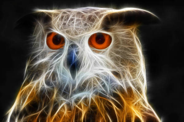 Digital Art - Owl Fractal Art by Matthias Hauser