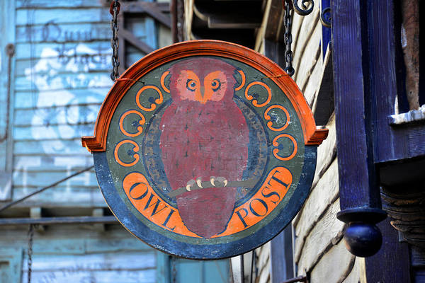 Potter Wall Art - Photograph - Owl Post  by David Lee Thompson