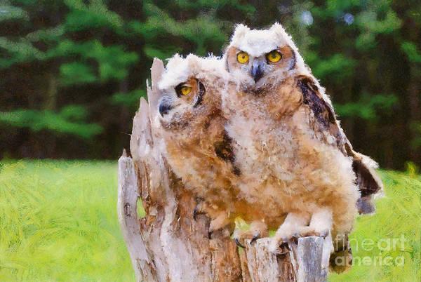 Photograph - Owlets - Painterly by Les Palenik