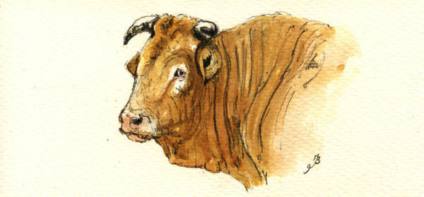 Wall Art - Painting - Ox Head Painting Study by Juan  Bosco