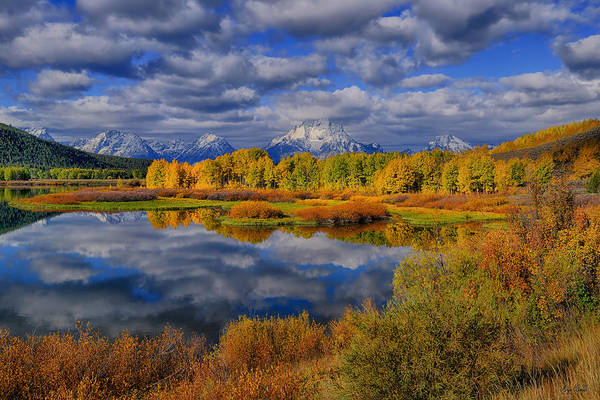 Photograph - Oxbow Bend Autumn 2013 by Greg Norrell