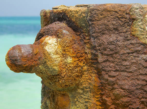 Photograph - Oxidized Iron Boat Pier by David Letts