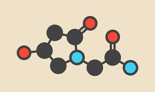 Ampa Wall Art - Photograph - Oxiracetam Nootropic Drug Molecule by Molekuul/science Photo Library