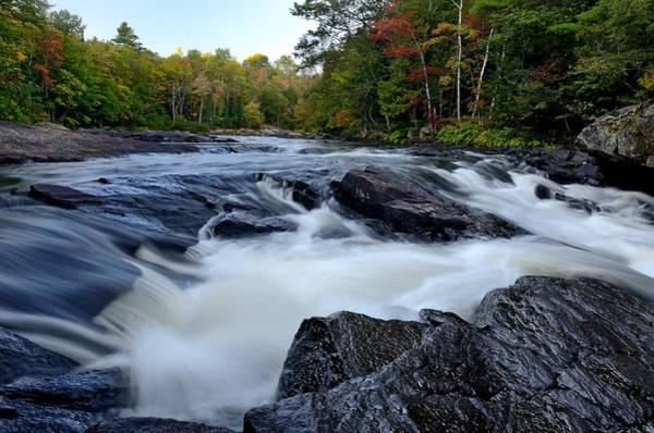 Oxtongue River Rapids Panoramic Art Print