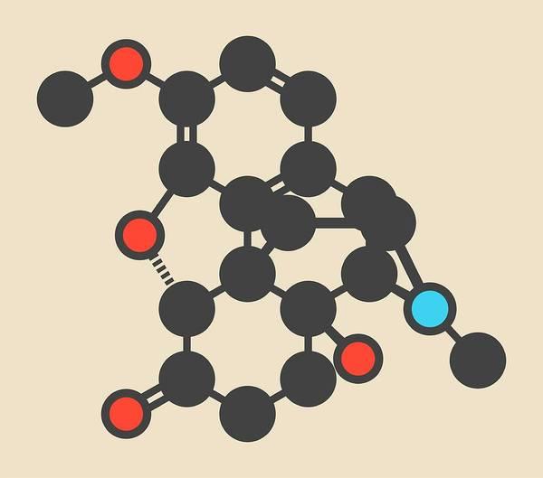 Chronic Pain Wall Art - Photograph - Oxycodone Pain Relief Drug Molecule by Molekuul