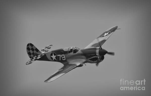 Wall Art - Photograph - P-40 Warhawk Bw by Tommy Anderson
