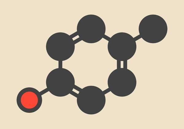 Preservative Wall Art - Photograph - P-cresol Molecule by Molekuul