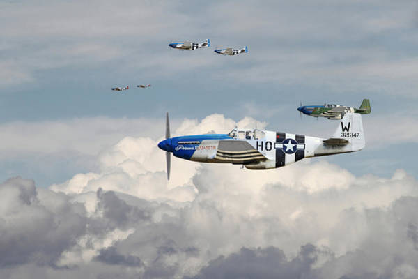 Nose Digital Art - P51 Mustang - Blue Noses - 352nd Fg by Pat Speirs