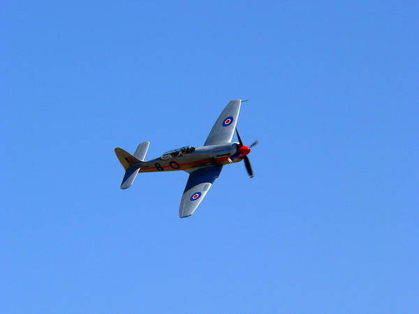 Photograph - P51 Mustang by Jeff Lowe