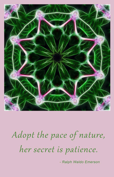 Digital Art - Pace Of Nature by Beth Sawickie