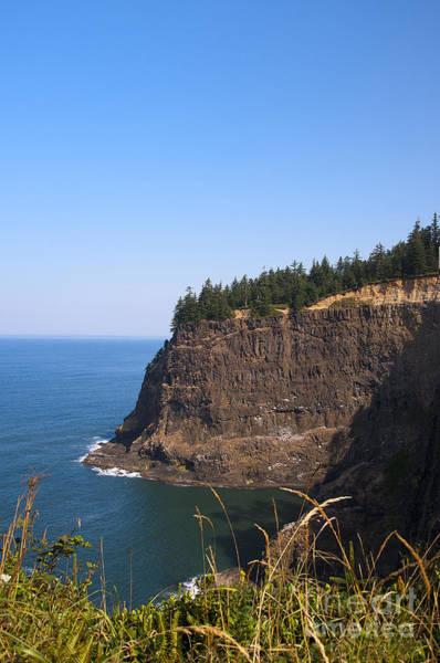 Photograph - Pacific Cliffs by Brenda Kean
