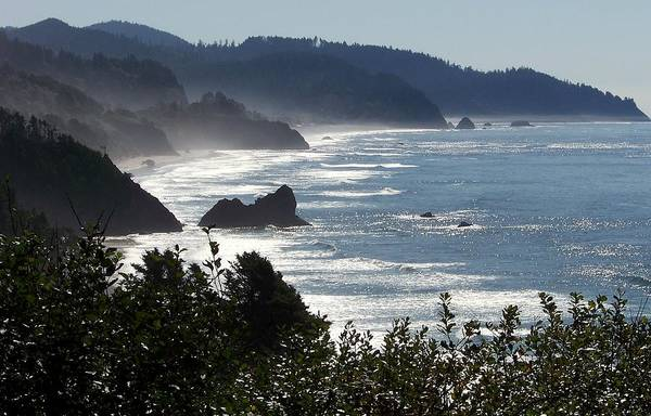 Oregon Coast Photograph - Pacific Mist by Karen Wiles