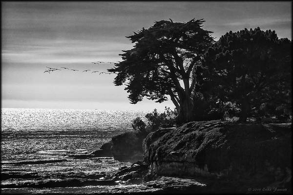 Photograph - Pacific Ocean by Erika Fawcett