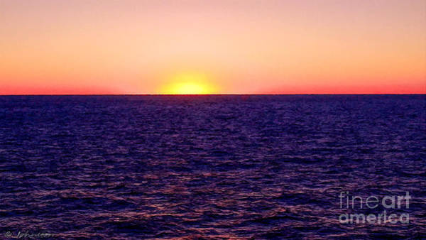 Painting - Pacific Sunset Off Laguna Beach by Bob and Nadine Johnston