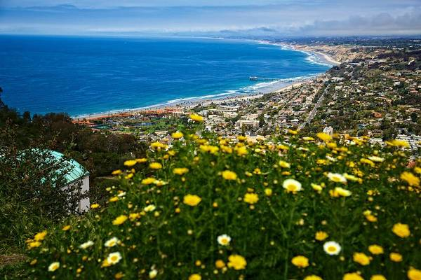 Mount Soledad Wall Art - Photograph - Pacific View by Dave Files