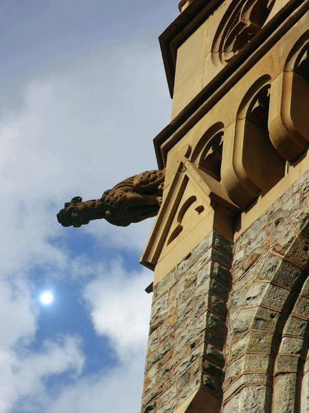 Lehigh University Wall Art - Photograph - Packer Memorial Church Gargoyle by Jacqueline M Lewis